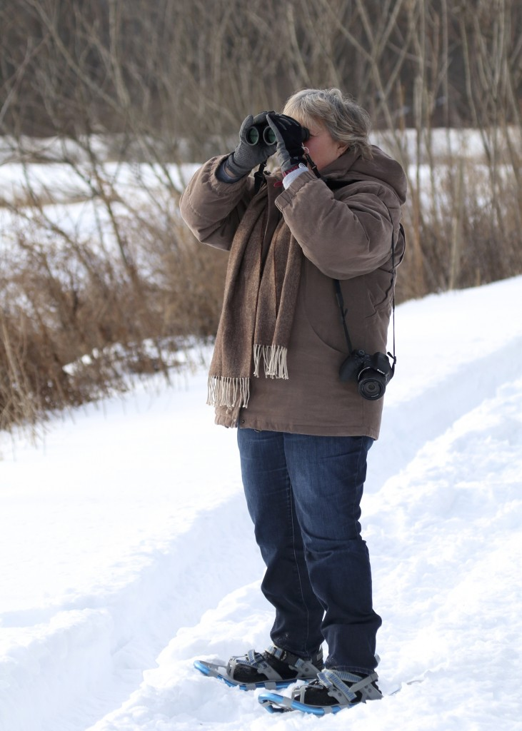 Karen Miller in action at the Winding Waters Nature Trail, 2/8/14.
